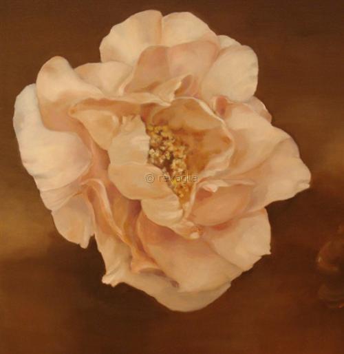 Peonia rosa - olio su tela - cm 60x80
