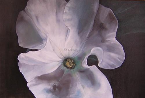 Petunia bianca - olio su tela - cm 120x80