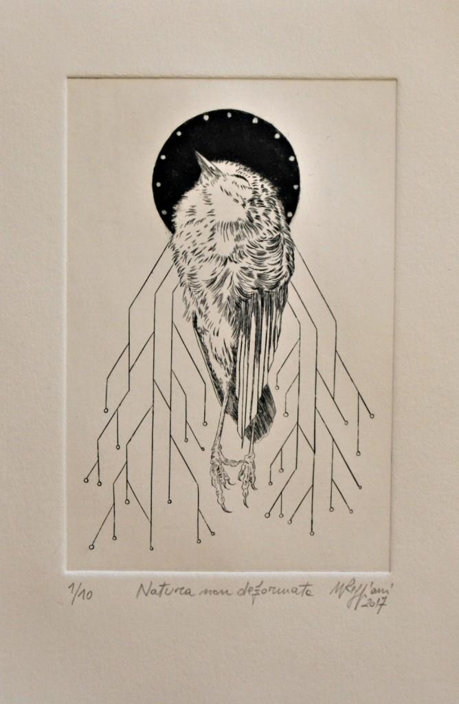 Natura non deformata | Walter Reggiani | Bulino su rame | 10x15cm | 2017