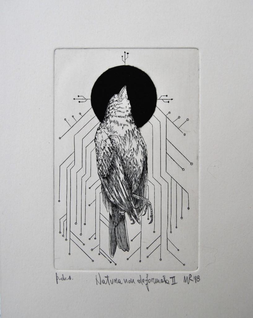 Walter Reggiani | Natura non deformata II | Bulino su rame | cm.10x15 | 2018